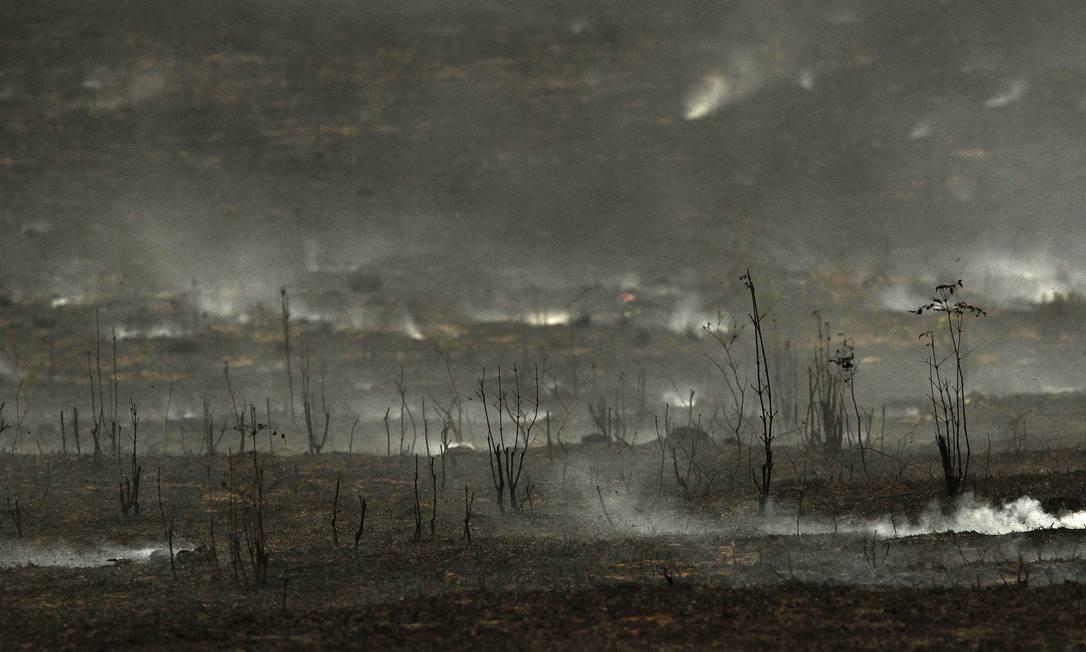 Região devastada no Pará, estado com maior índice de desmatamento no Brasil Foto: RAIMUNDO PACCÓ / Agência O Globo