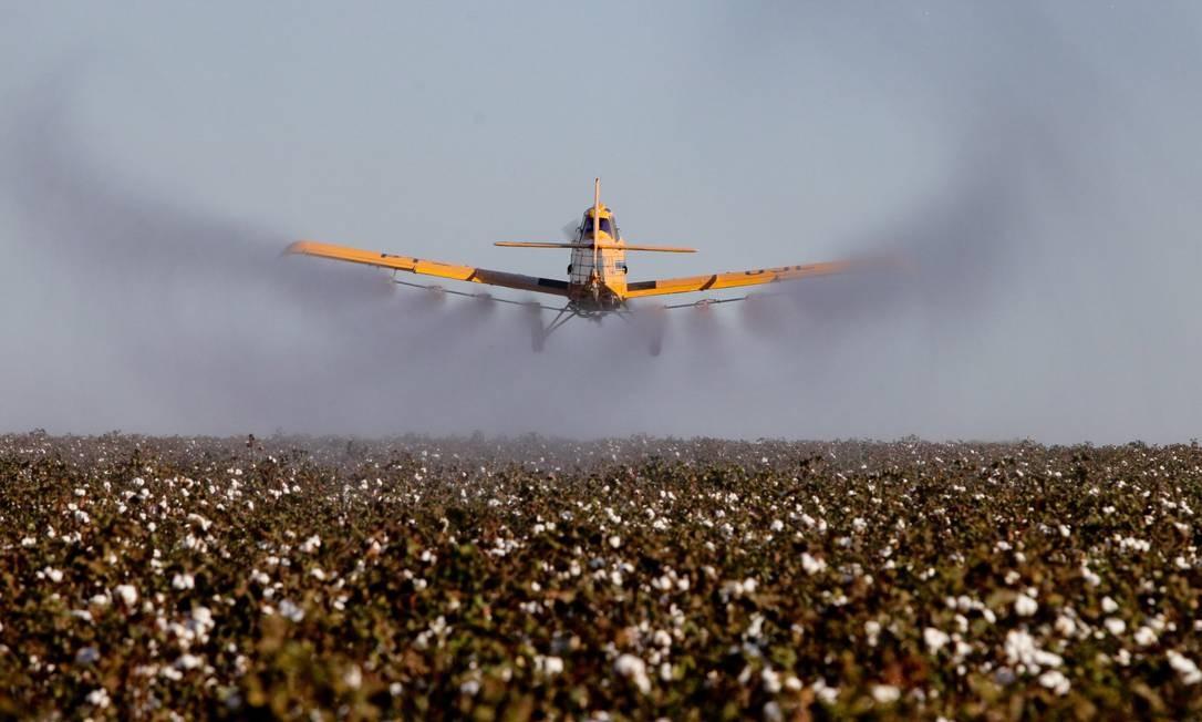Avião pulverizador de agrotóxicos em lavouras de Campo Grande (MT). Foto: Marcos Alves / Agência O Globo