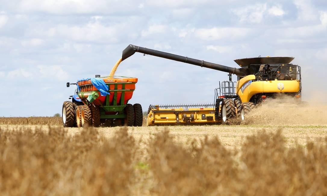 O caso envolve produtores do setor de grãos, principalmente feijão, soja e milho, mas pode chegar a indústrias alimentícias do Brasil, que compravam os produtos originados das transações com empresas de fachada Foto: Fábio Rossi / Agência O Globo