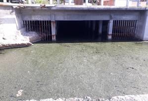 Sem oxigenação, o espelho d'água junto ao túnel do Tibau mais parece um piso de concreto Foto: Divulgação / Divulgação