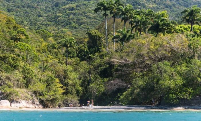 Cenário exuberante da Ilha Grande Foto: Alex Ferro em 23.07.2003 / Agência O Globo