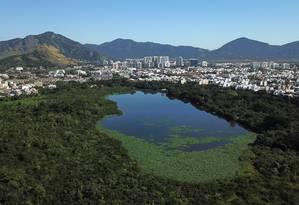 Um mês após limpeza, as gigogas voltaram na Lagoinha das Taxas Foto: Custódio Coimbra / Agência O Globo
