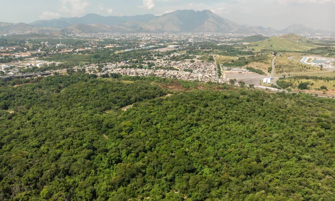 A prefeitura do Rio quer construir um autódromo onde é hoje a Floresta do Camboatá, em Deodoro. Só a Rio Motorpark apresentou proposta Foto: Brenno Carvalho / Agência O Globo