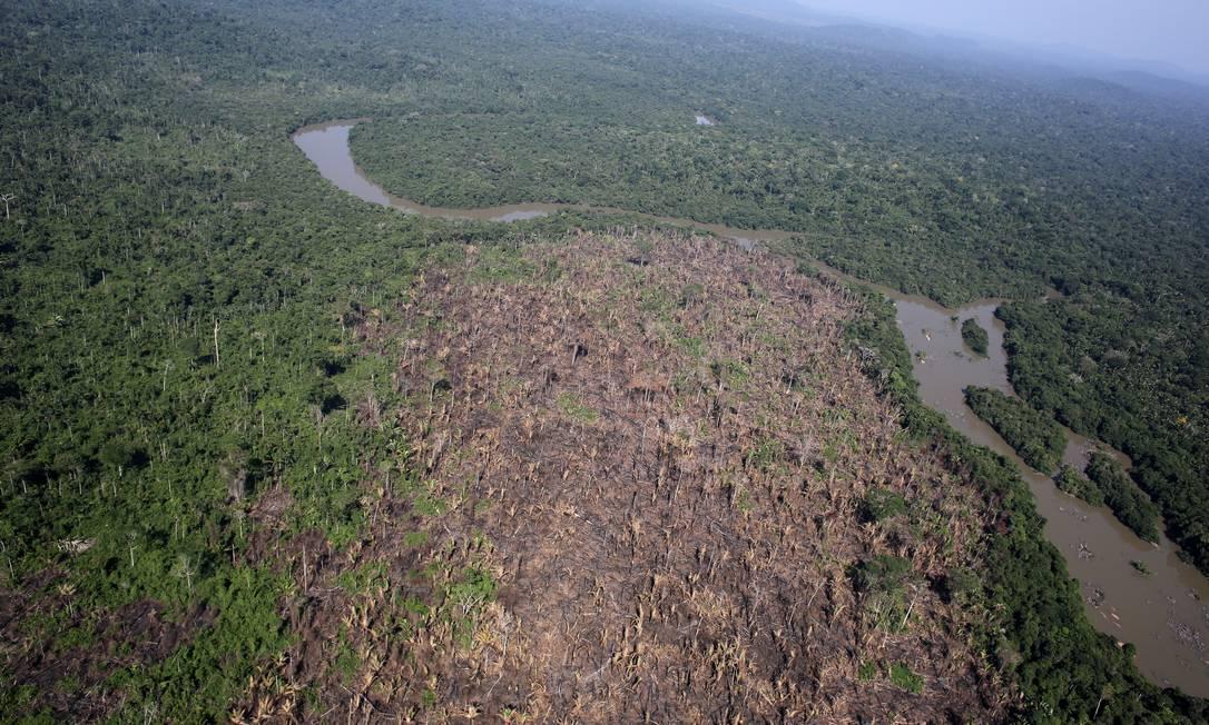 O Inpe faz o monitoramento do desmatamento no país Foto: NACHO DOCE / REUTERS