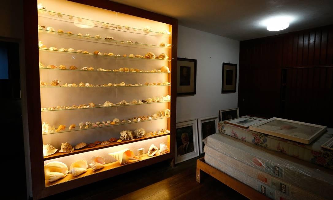 Um armário exibe conchas do acervo do paisagista Foto: Pablo Jacob / Agência O Globo