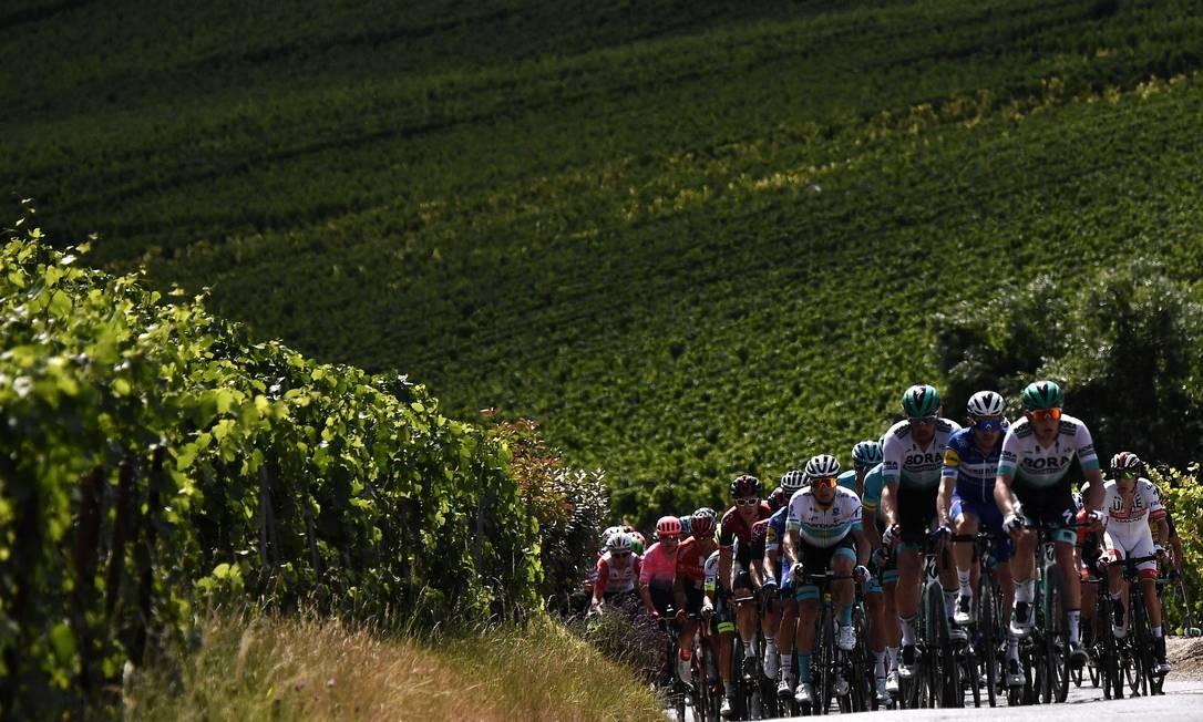 Ciclistas passam por uma estrada cercada por vinhedos durante a terceira etapa da 106ª edição da corrida de ciclismo Tour de France entre Binche e Epernay Foto: MARCO BERTORELLO / AFP