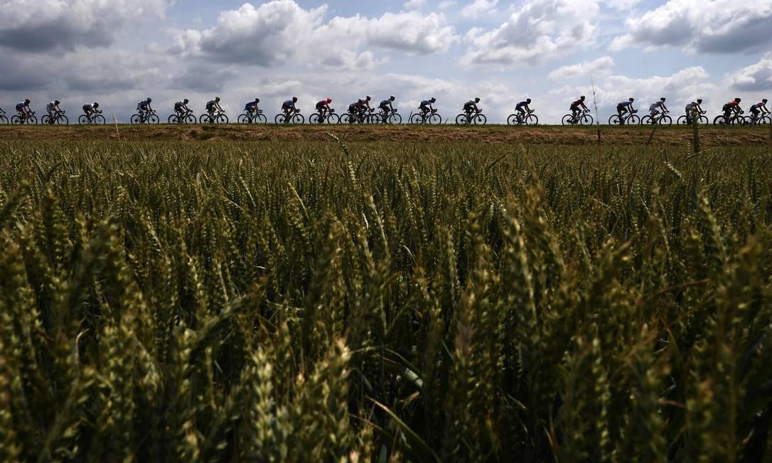 Ciclistas passam por campos de trigo, durante a terceira etapa da 106ª edição da corrida de ciclismo Tour de France entre Binche e Epernay Foto: JEFF PACHOUD / AFP