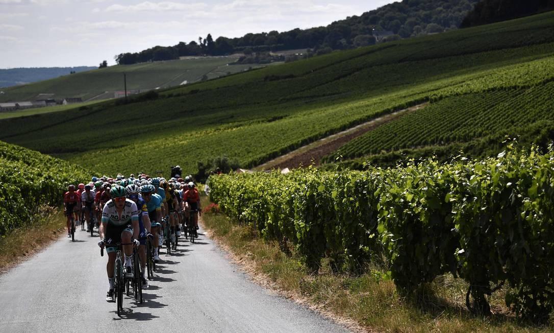Ciclistas pedalam em terra firme cercada por vinhedos durante a terceira etapa da 106ª edição da corrida de ciclismo Tour de France entre Binche e Epernay Foto: MARCO BERTORELLO / AFP