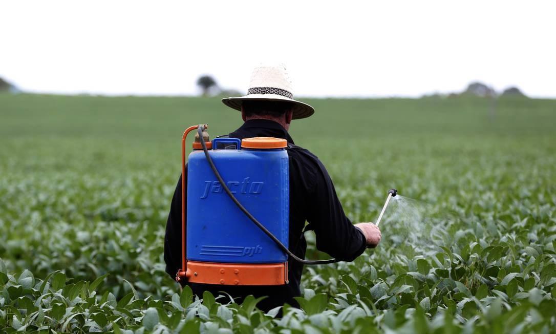 Clorpirifós, um inseticida usado na produção agrícola nacional desde a década de 1980, já foi banido em lugares como a Califórnia Foto: Michel Filho - 26-1-17 / Agência O Globo