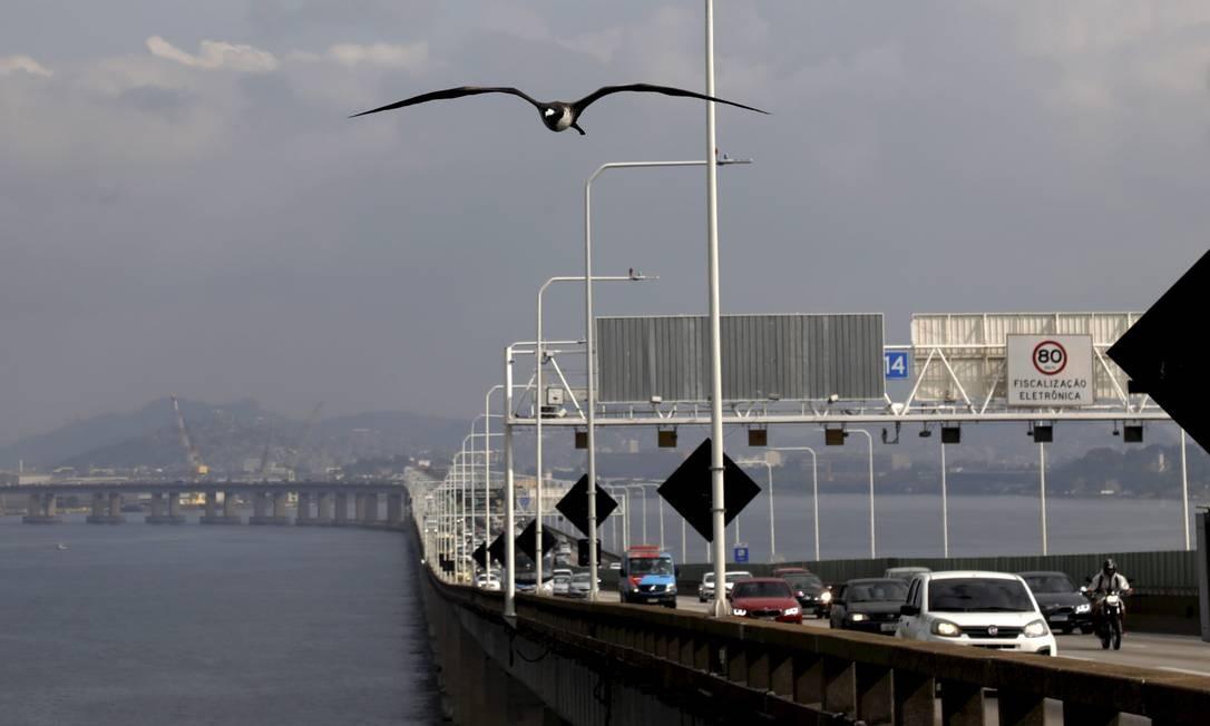 """Carcarás estão """"vivendo"""" na Ponte Presidente Costa e Silva (Rio-Niterói). As duas aves apareceram este ano. Já foram vistas nos pórticos, pausadas nos postes e no mês passado um deles foi filmado pelas câmeras que monitoram o trânsito da ponte Foto: Custodio Coimbra / Agência O Globo"""