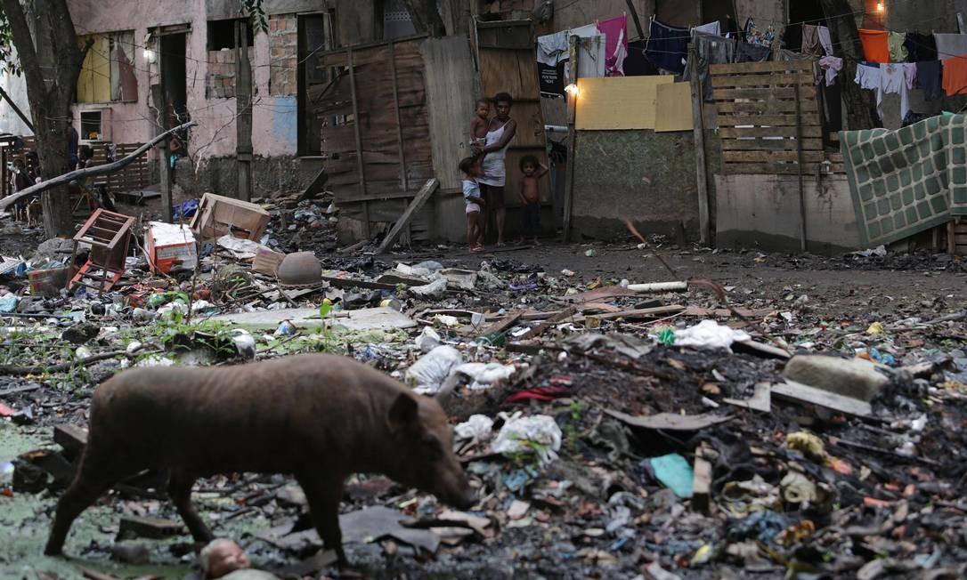Pessoas vivem em condições precárias em prédio ocupado conhecido como Condomínio Jambalaia, no bairro Nova Cidade, em Campo Grande, e dividindo espaço com animais como porcos e cavalos Foto: Márcio Alves / Agência O Globo