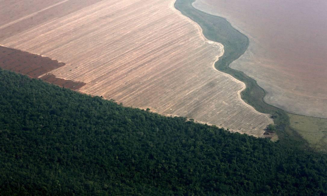 Números do Inpe mostram avanços no desmatamento da Amazônia, contestados por Bolsonaro Foto: Paulo Whitaker / Agência O Globo