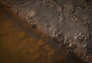 Rio Paraopeba que está com a margem cheia de minério Foto: Pablo Jacob / Agência O Globo