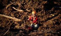 O tenente Ricardo Mendes e o labrador Nego, dos bombeiros da Paraíba, os cães localizaram mais de 80% dos restos mortais das vítimas do rompimento da barragem da Vale Foto: Pablo Jacob / Agência O Globo