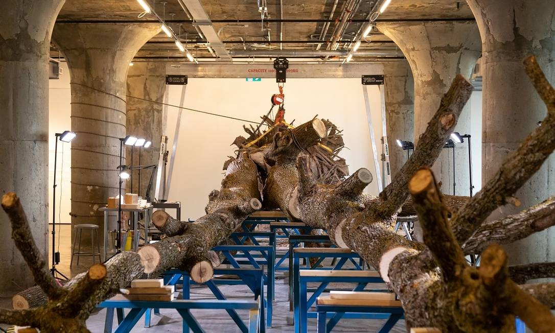 A instalação de 'The life of a dead tree', de Mark Dion, está no Museum of Contemporary Art de Toronto (MOCA) Foto: Eugen Sakhnenko / The New York Times