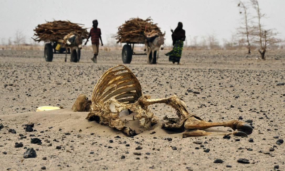 Seca em Nairóbi, no Quênia: mudanças climáticas assumem papel global Foto: SIMON MAINA / AFP