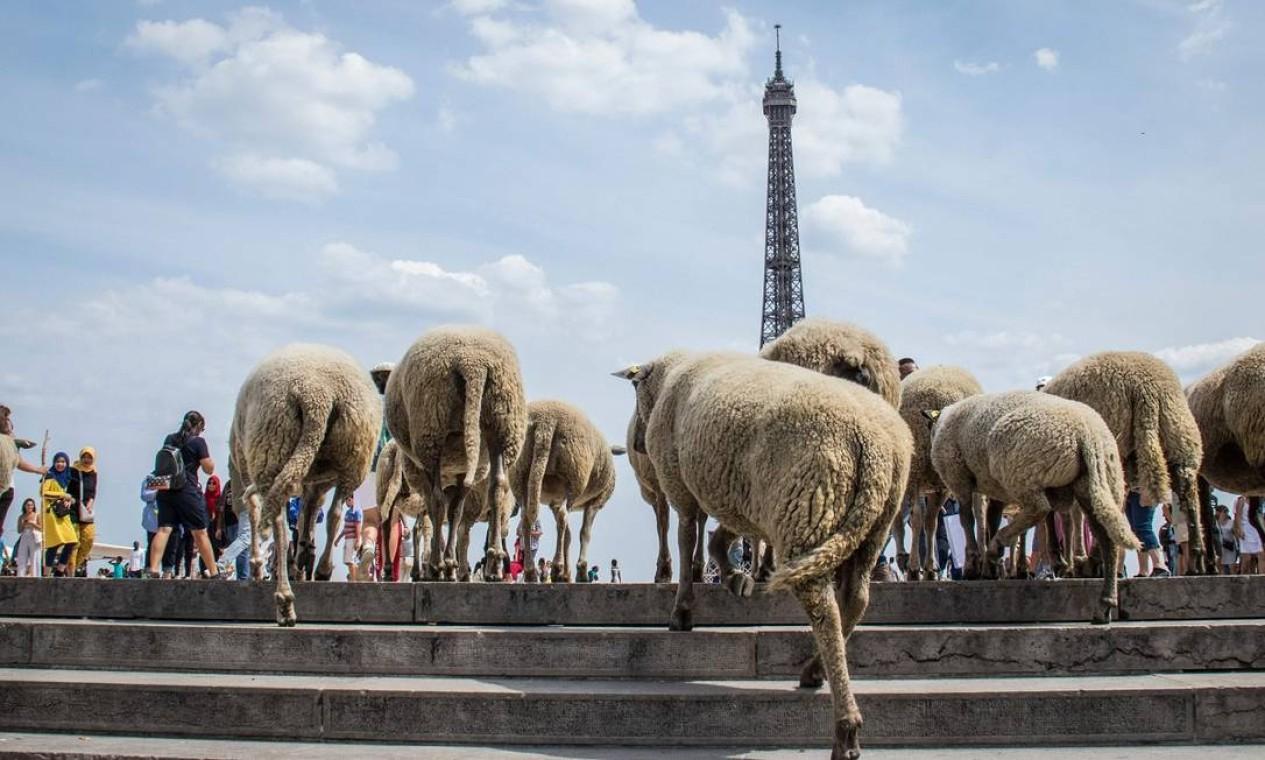 O monumento é visitado até por ovelhas Foto: - / AFP