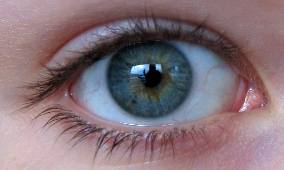 A lente é feita de polímeros que se expandem quando a corrente elétrica é aplicada Foto: Free Images