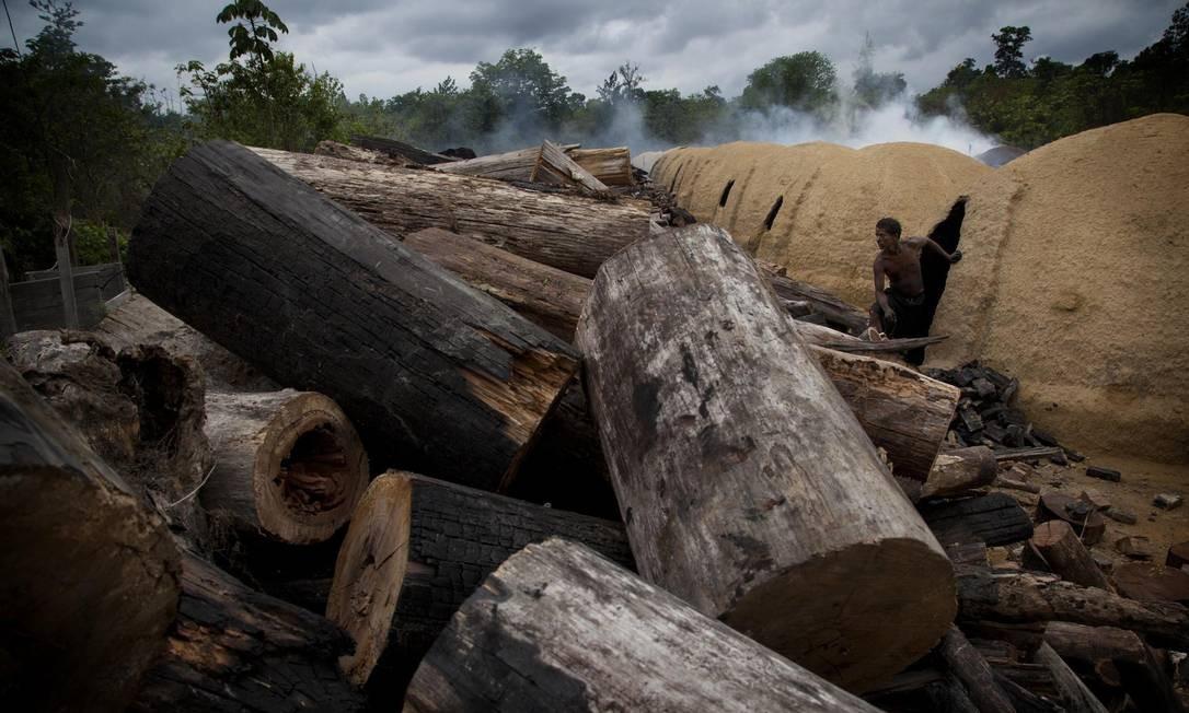 Campo de carvão ilegal no município de Goianésia, registrado em 31 de outubro de 2011 Foto: MARIZILDA CRUPPE / AFP / Greenpeace