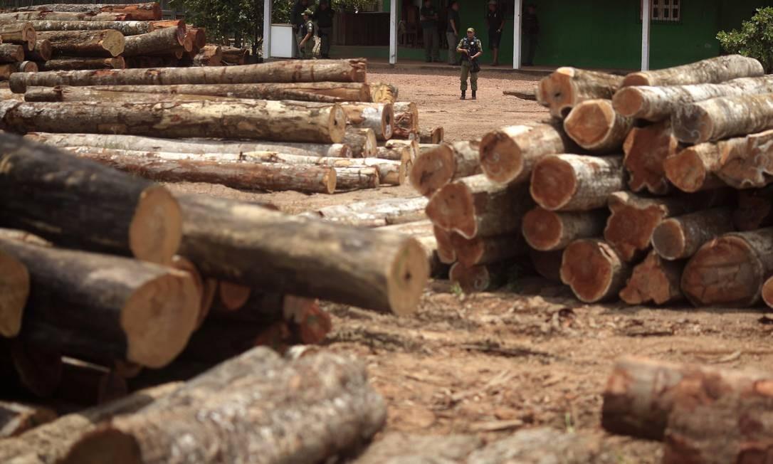 """Operação """"Hileia Pátria"""", realizada em setembro de 2013, apreende árvores que foram ilegalmente desmatadas da floresta amazônica na reserva indígena Alto Rio Guamá. Nova Esperança do Piriá, no Pará Foto: RICARDO MORAES /"""