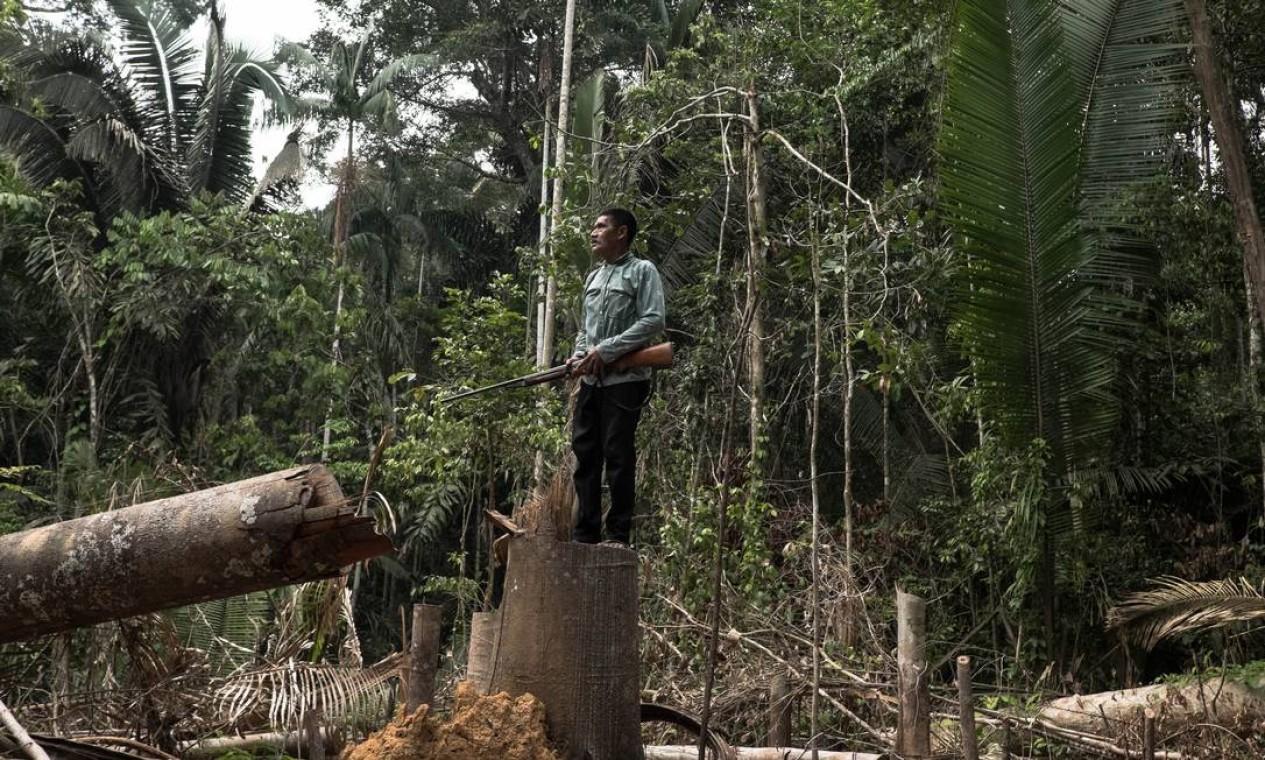 Indígena Karipuna Aripã em pé sobre tronco cortado em área desflorestada no interior da reserva de Karipuna. Ratificada em 1998, a reserva, com 152.930 ha, sofre constantes invasões de madeireiros ilegais - 17/10/2017 Foto: Tommaso Protti / Agência O Globo