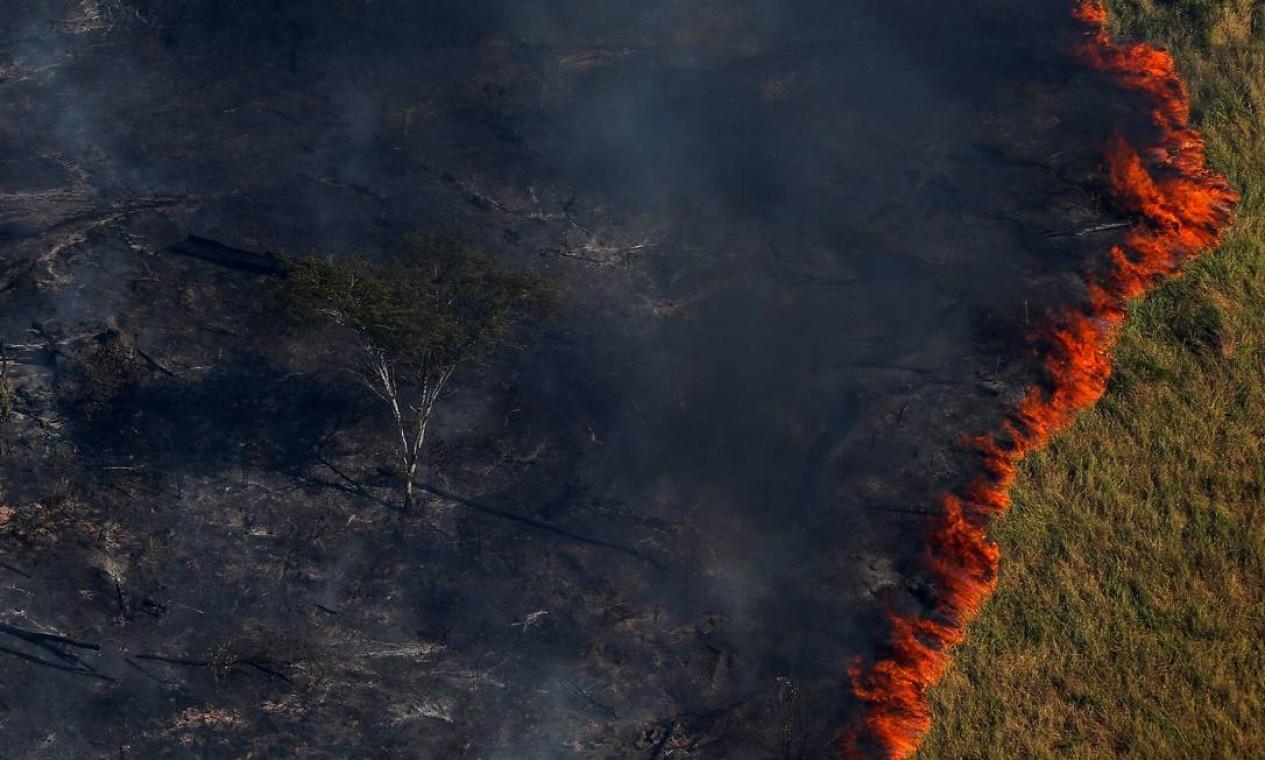 """Flagrante de queimada criminosa da floresta durante a """"Operação Onda Verde"""", conduzida por agentes do Ibama, para combater a extração ilegal de madeira em Apui, no sul do estado do Amazonas, em agosto 2017 Foto: BRUNO KELLY / Reuters"""