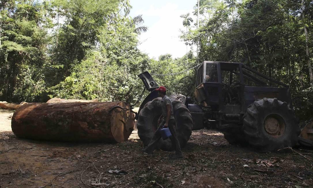 Homem contratado por madeireiros para cortar árvores na floresta amazônica age com auxílio de um veículo pronto para arrastar um tronco no Parque Nacional Jamanxim, perto da cidade de Novo Progresso, Pará, em 21 de junho de 2013 Foto: NACHO DOCE / REUTERS