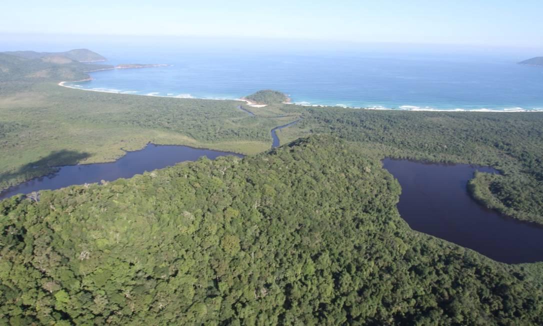 Reserva biológica na Ilha Grande, em Angra dos Reis Foto: Mário Moscatelli / Projeto Olho Verde