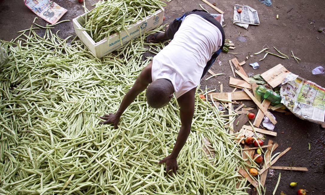 Segundo a ONU, cerca de 1,3 milhão de toneladas de comida são perdidas ou desperdiçadas por ano no mundo. Foto: Márcia Foletto / Agência O Globo