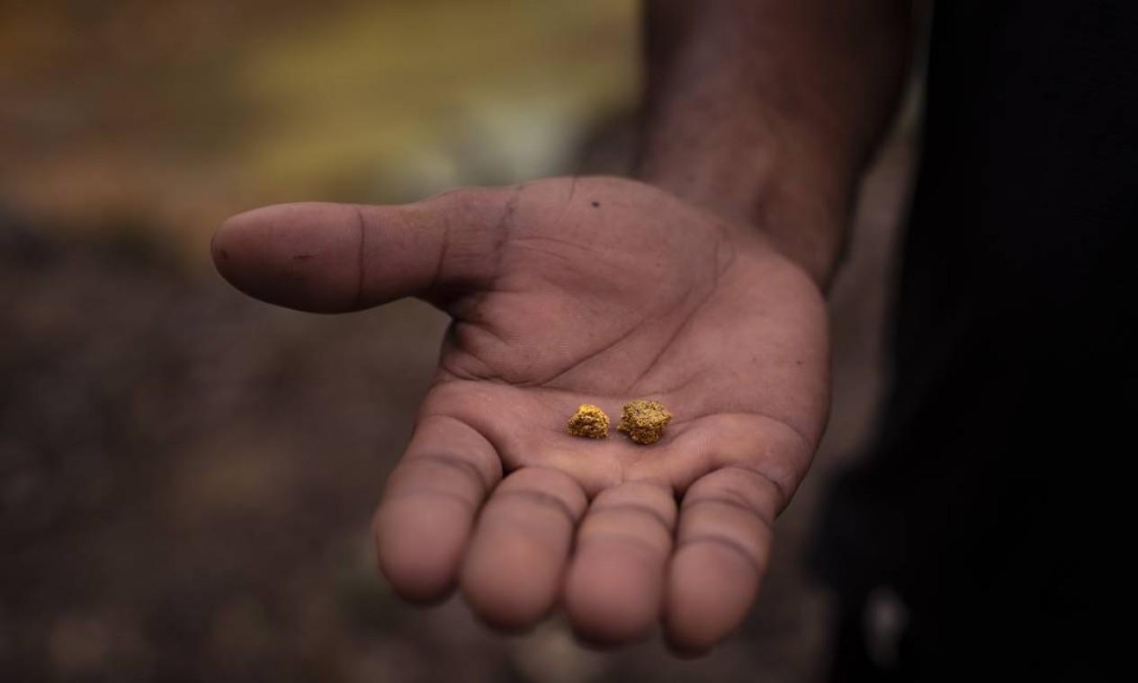 O garimpeiro Lourinho mostra o ouro que ganhou durante a última semana de trabalho. Garimpo ilegal está vivo no coração da maior reserva indígena do Brasil, a dos ianomâmis, em Boa Vista (RR) Foto: Daniel Marenco / Agência O Globo