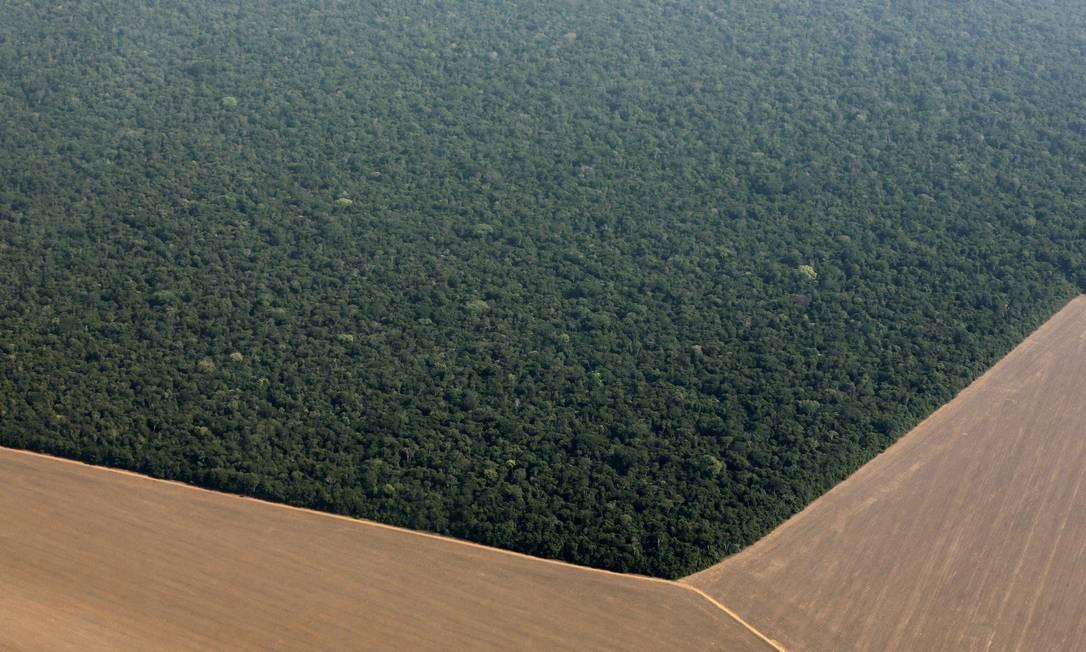 Vista aérea das fronteiras entre a Amazônia e as plantações de Soja no Mato Grosso Foto: PAULO WHITAKER / Agência O Globo