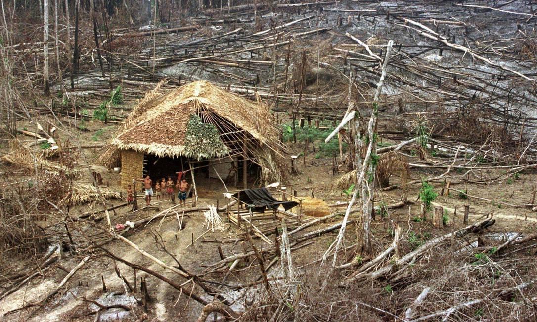 A terra indígena ianomâmi tem 9,6 milhões de hectares entre os estados de Amazonas e Roraima Foto: Gregg Newton / Reuters