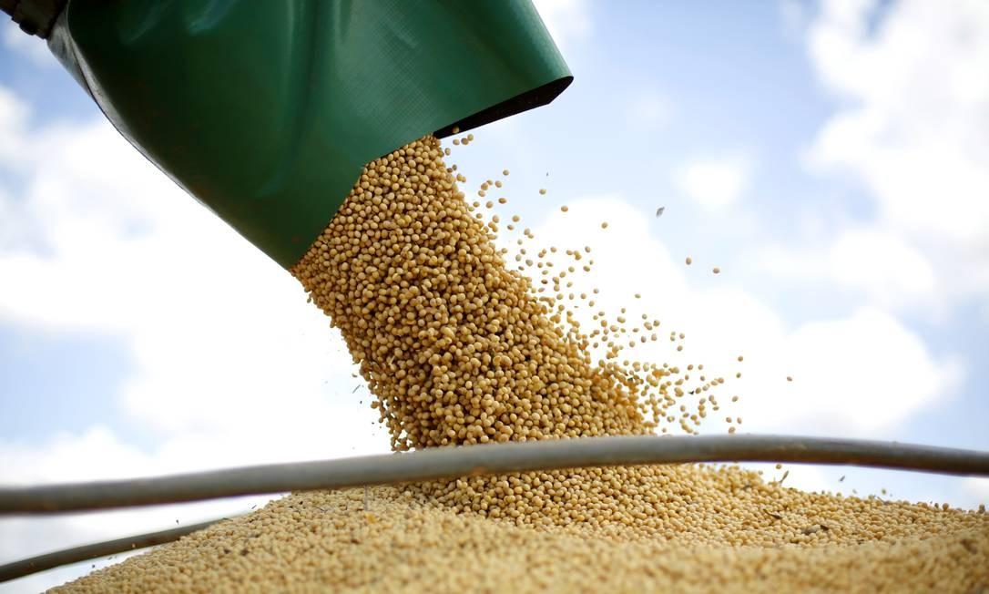 Colheita de soja no Oeste da Bahia: segurança alimentar e uso eficiente da terra são as preocupações listadas no novo relatório do IPCC Foto: Fábio Rossi / Agência O Globo