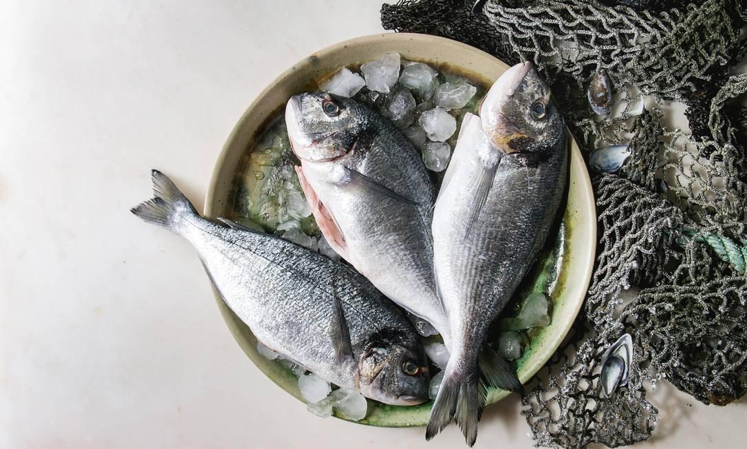 """Sabemos que os estoques estão acabando porque, a cada ano, o tamanho dos peixes está menor e precisamos de mais barcos para achar a mesma quantidade de bichos num dado """"pedaço"""" de mar Foto: REDA&CO / Universal Images Group via Getty"""