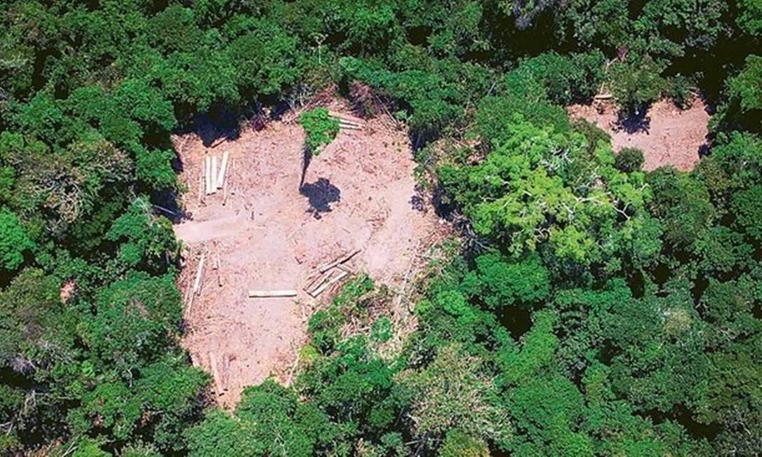 Imagem registra devastação no Pará