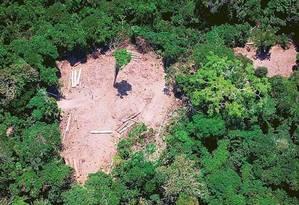 Imagem registra devastação no Pará Foto: Raphael Alves/AFP/13-10-2014