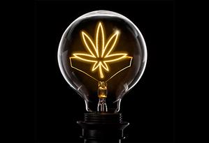 Lâmpada com folha de cannabis Foto: Getty