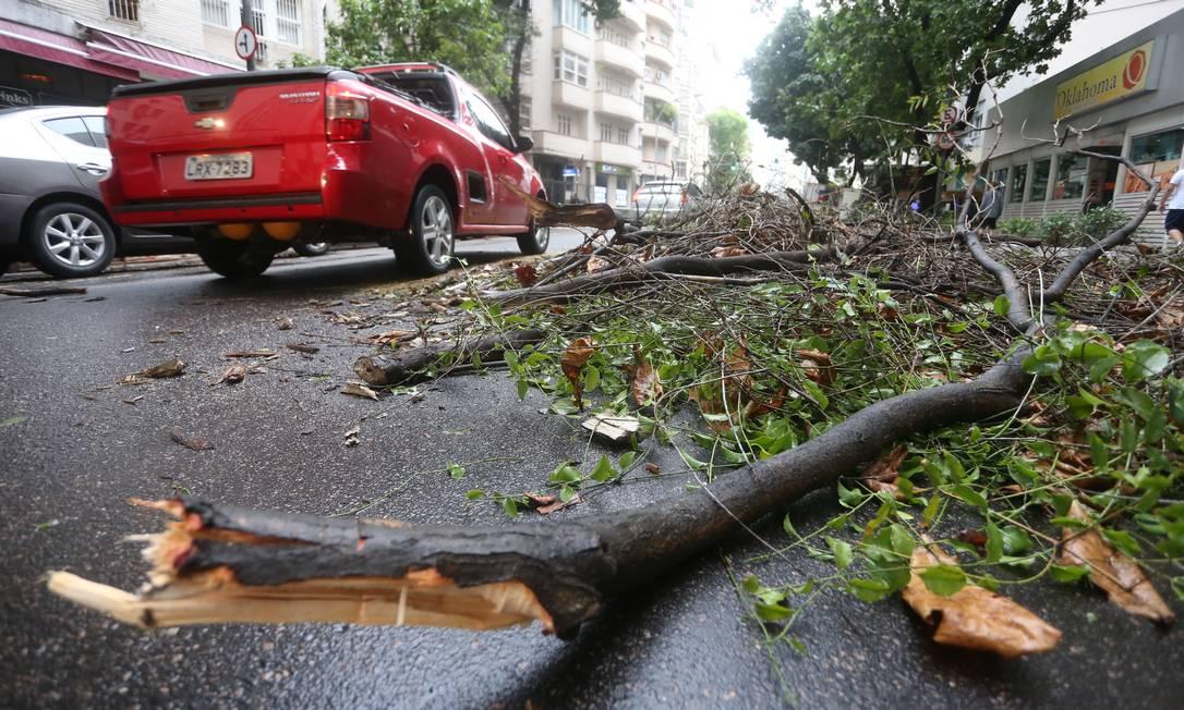 Um galho de árvore caiu na Rua Senador Vergueiro, no Flamengo Foto: Fabiano Rocha / Agência O Globo