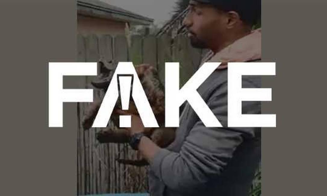FAKE que vídeo mostre wigu e que animal que grita como ser humano Foto: Foto: Reprodução