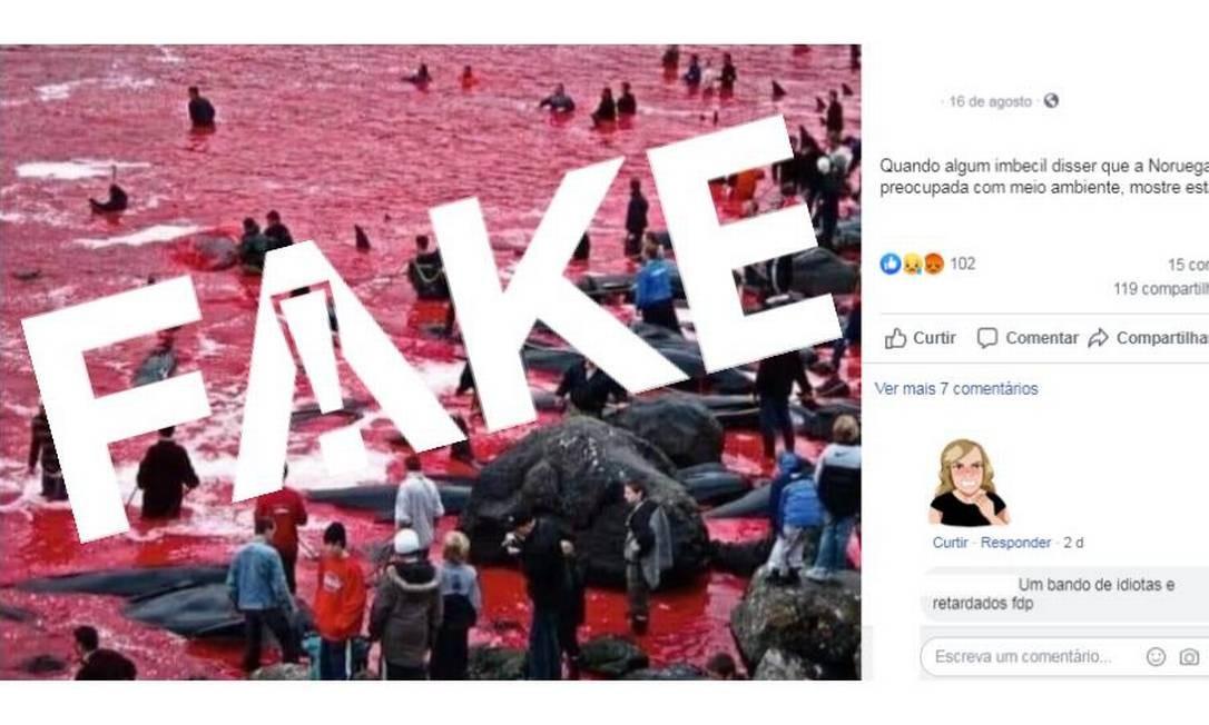 É #FAKE que imagens mostrem matança de baleias na Noruega Foto: Reprodução