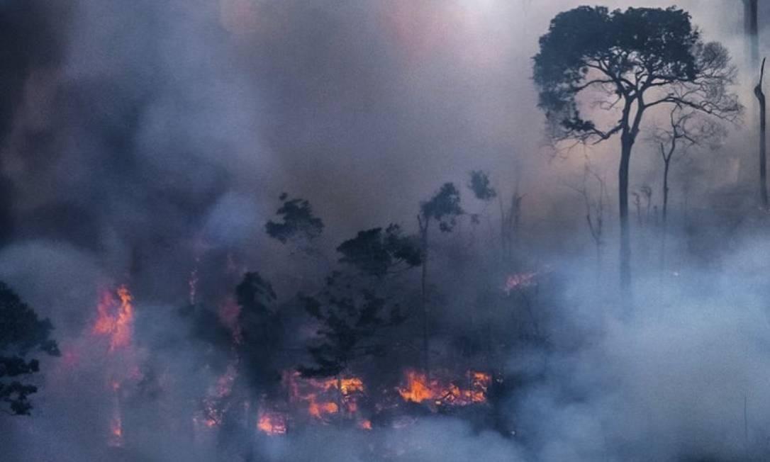 Aumento no número de focos de incêndio em florestas é um dos assuntos repercutidos na rede social Foto: Reprodução/ Twitter
