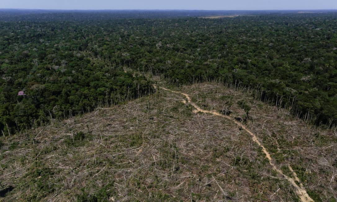 Vista aérea mostra terra desmatada durante a operação Green Wave, conduzida pelo Ibama, na região do stado do Amazonas Foto: Bruno Kelly / Reuters/27-7-2017