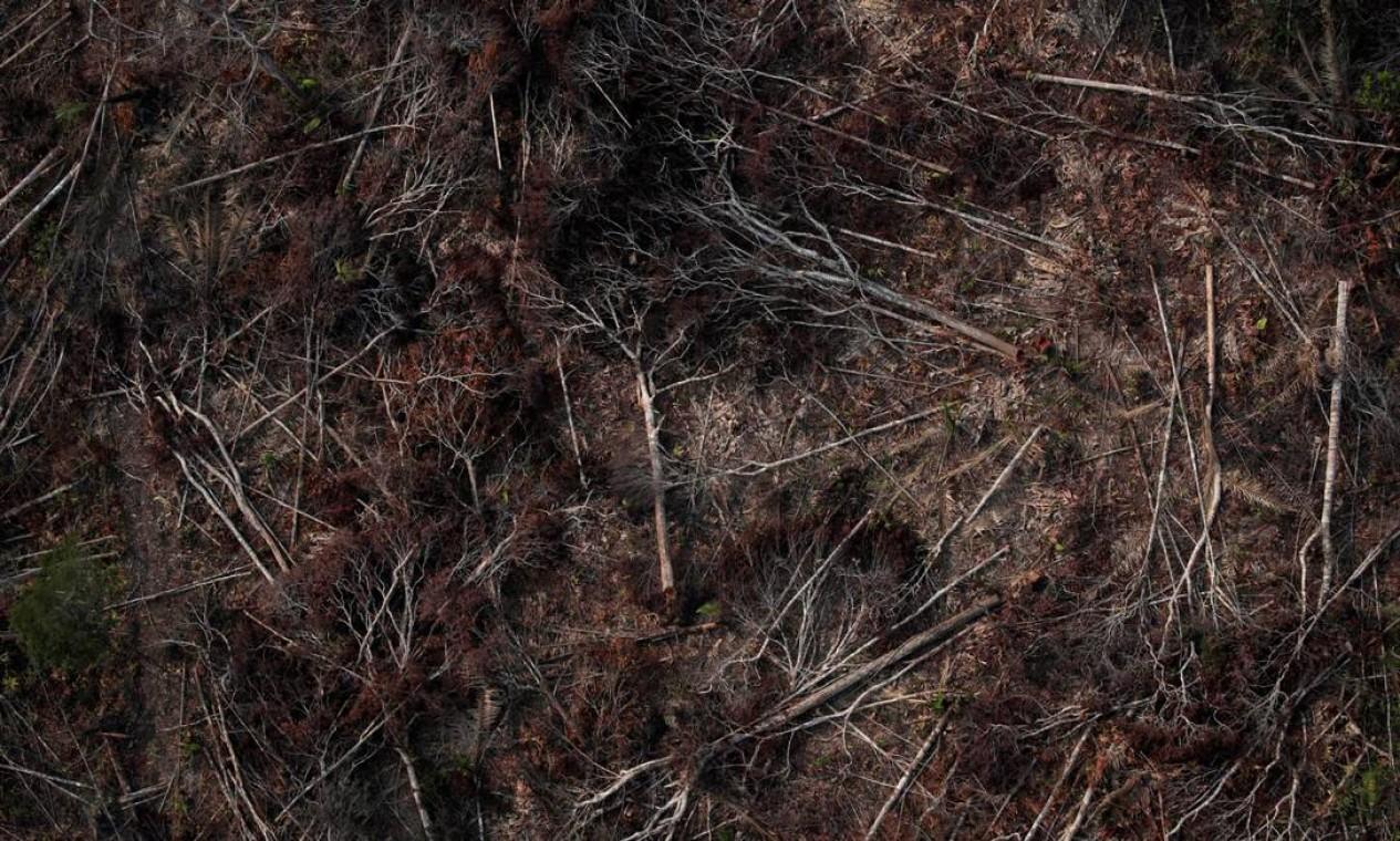Vista aérea de uma área desmatada da Amazônia perto de Porto Velho, Rondônia. Nos últimos dias, o presidente brasileiro tem provocado países europeus que pedem maior cuidado do governo brasileiro com a floresta Foto: UESLEI MARCELINO / REUTERS