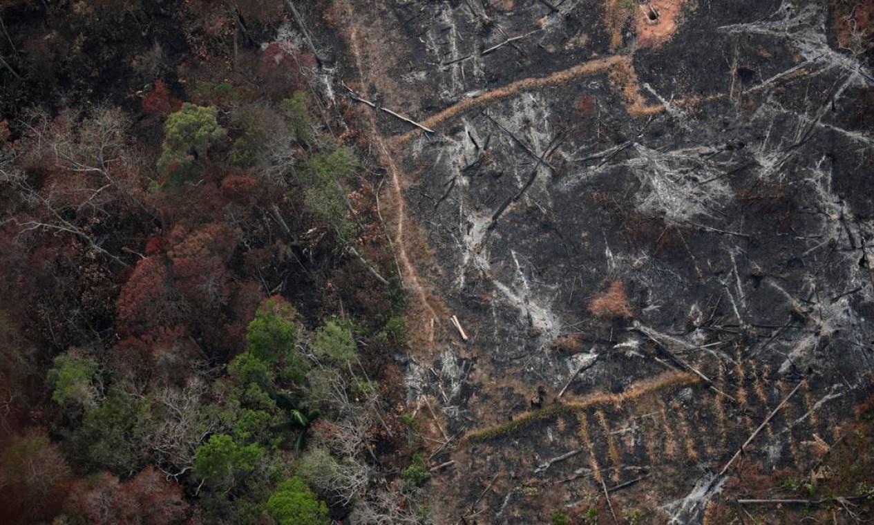 Brasil tem sido criticado internacionalmente sobre o aumento das queimadas e do desmatamento na floresta amazônica Foto: UESLEI MARCELINO / REUTERS