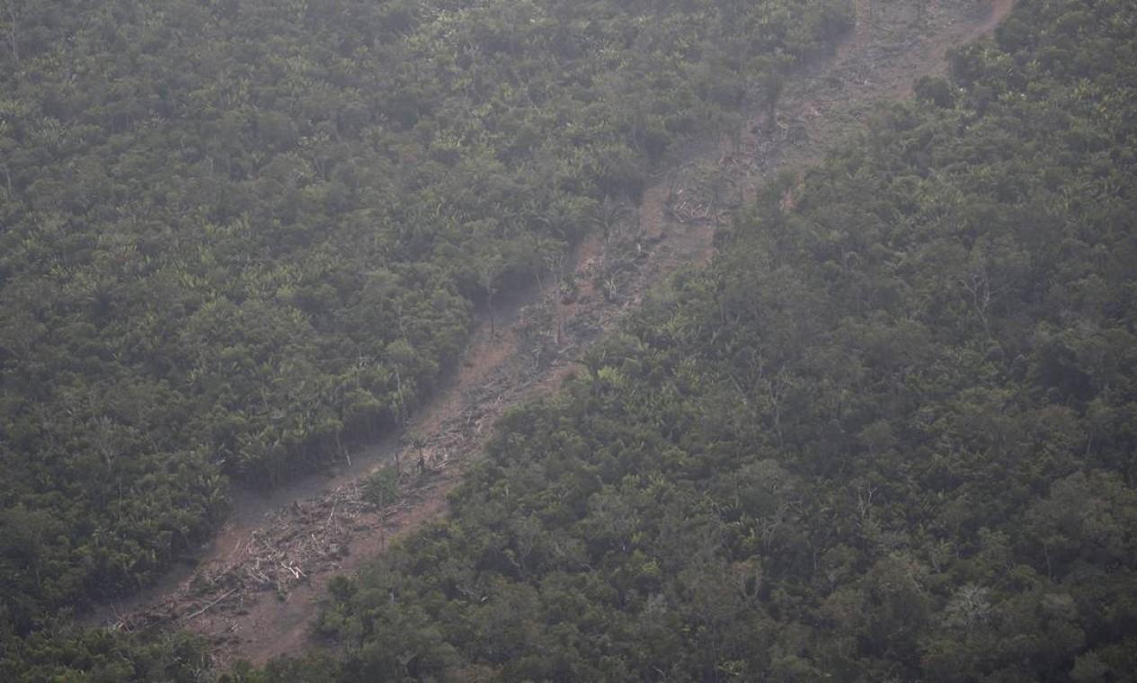 Área desmatada da Amazônia em Rondônia. O presidente da França, Emannuel Macron, convocou, via Twitter, os países membros do G7 para discutir as queimadas na Amazônia na cúpula que acontece neste final de semana, em Biarritz, na França Foto: UESLEI MARCELINO / REUTERS