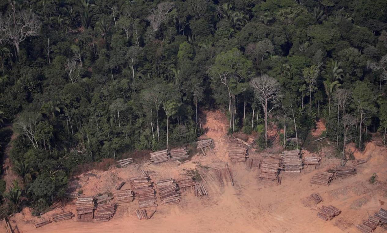 """Troncos cortados ilegalmente da floresta amazônica em serrarias perto de Humaitá. Governador do Amazonas criticou discurso da """"permissividade"""" feito pelo governo: """"quem infringe a lei acredita que não será punido"""", disse Wilson Lima Foto: UESLEI MARCELINO / REUTERS"""