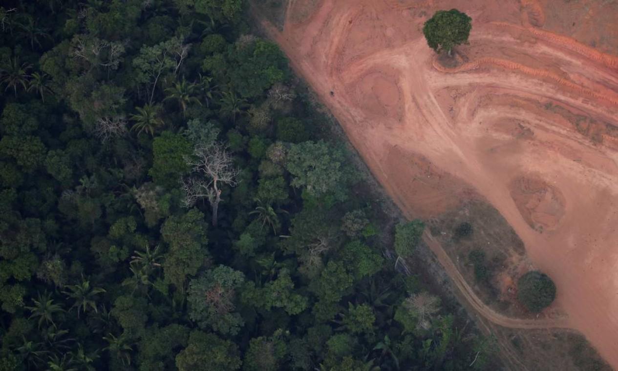 """O secretário-geral da ONU, o português António Guterres, expressou preocupação com a floresta amazônica. """"No meio da crise climática global, não podemos permitir mais danos a uma fonte importante de oxigênio e biodiversidade. A Amazônia tem de ser protegida"""", escreveu Guterres em sua conta no Twitter Foto: UESLEI MARCELINO / REUTERS"""