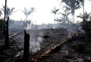 Foto de queimada de Iranduba, no Amazonas, feita no último dia 20 de agosto Foto: BRUNO KELLY / Reuters
