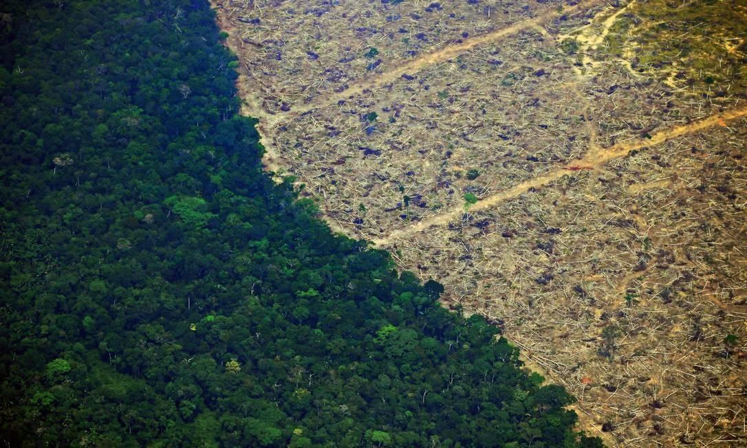Crise ambiental na floresta amazônica pode impactar negativamente a economia brasileira Foto: Carl de Souza / AFP