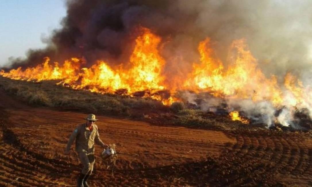 O número de focos de incêndio e de alertas de desmatamento cresceu - mas o Ibama diminuiu o ritmo das multas. Na foto, uma queimada no Mato Grosso do Sul Foto: Corpo de Bombeiros